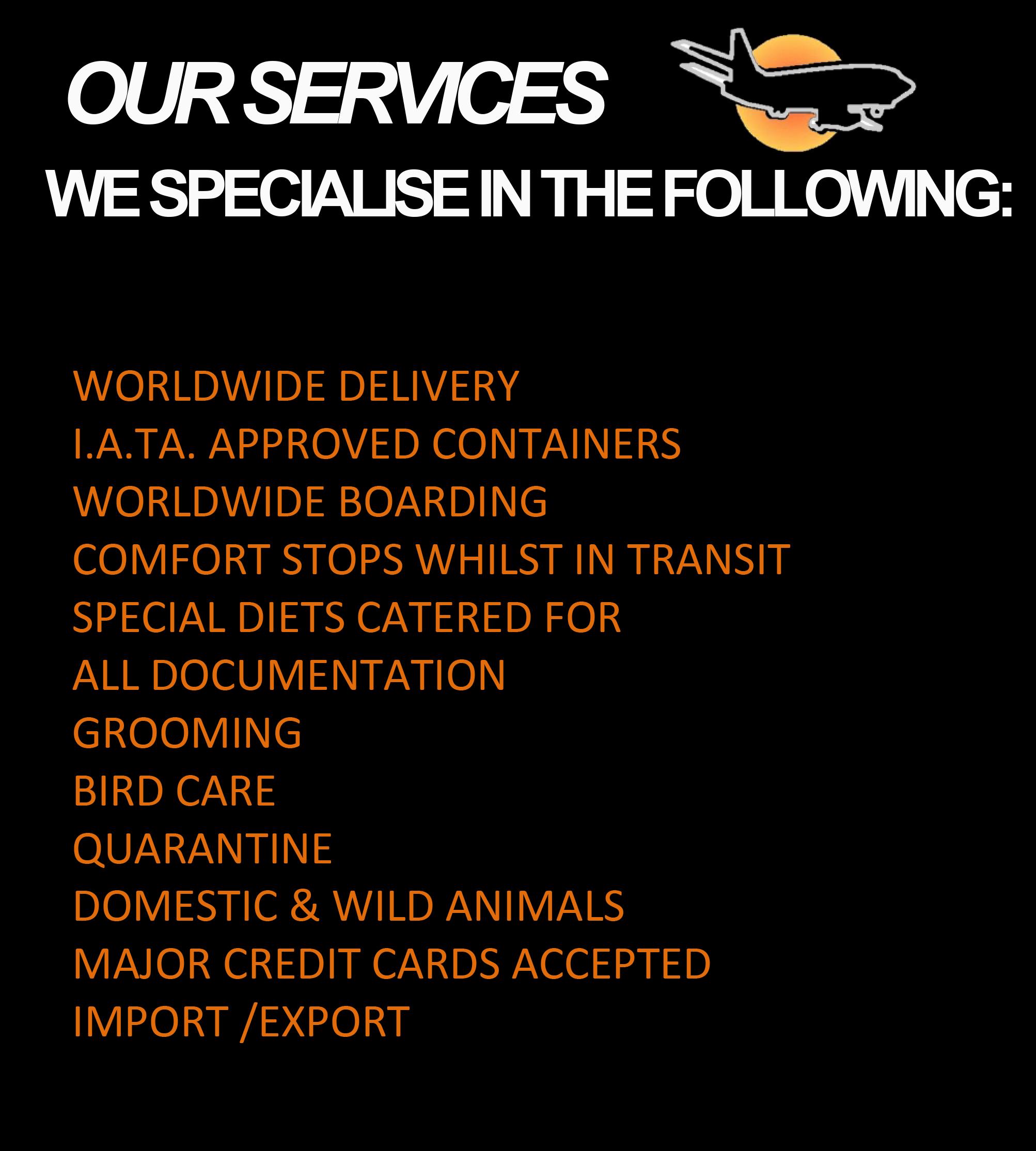 Animal Travel Services Pet Travel Expert