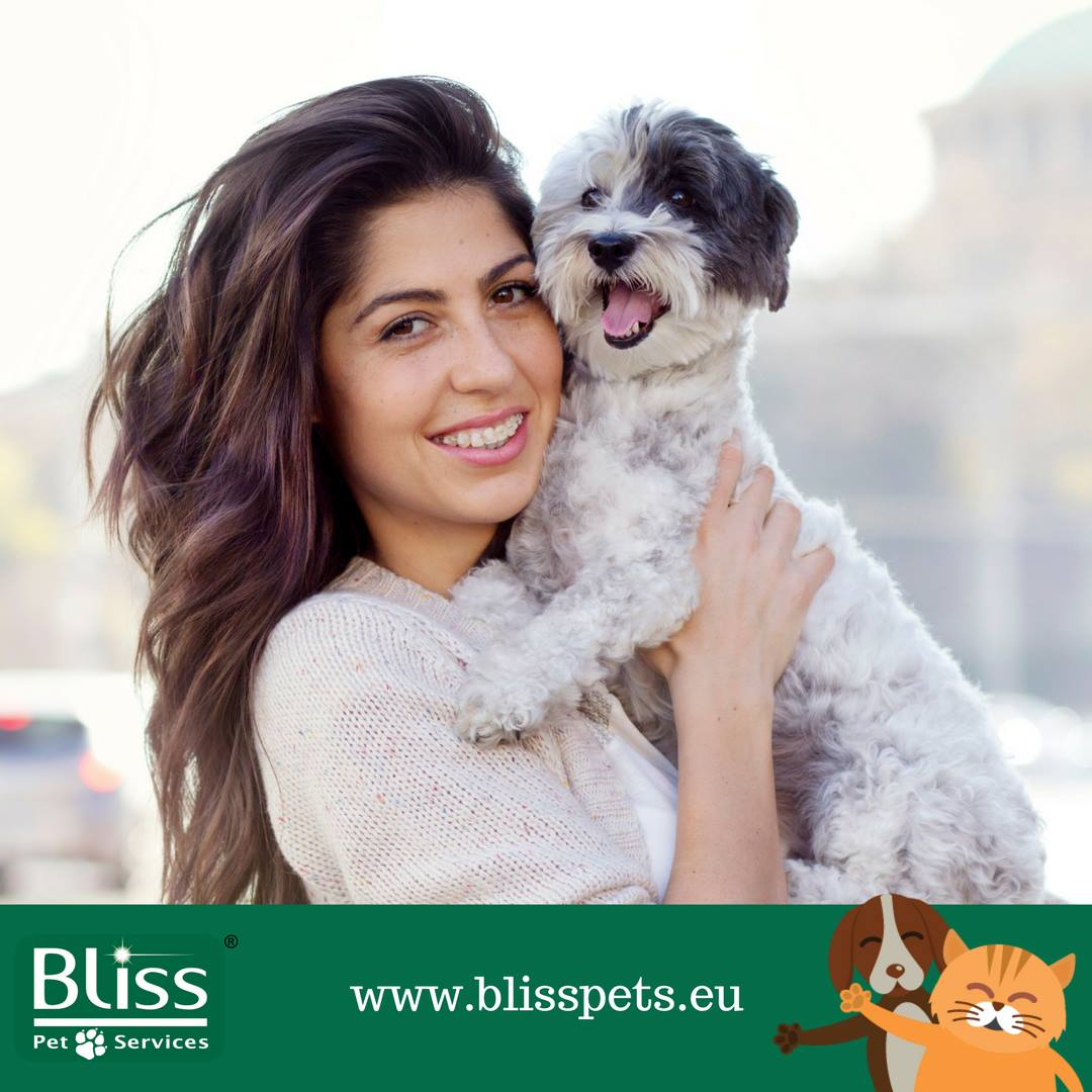 Bliss Pet Transport and Travel Services