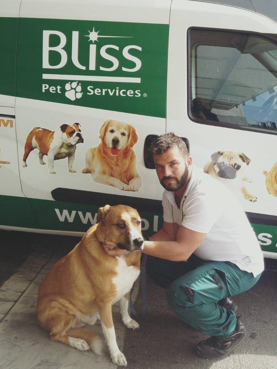 Bliss Pet Expert
