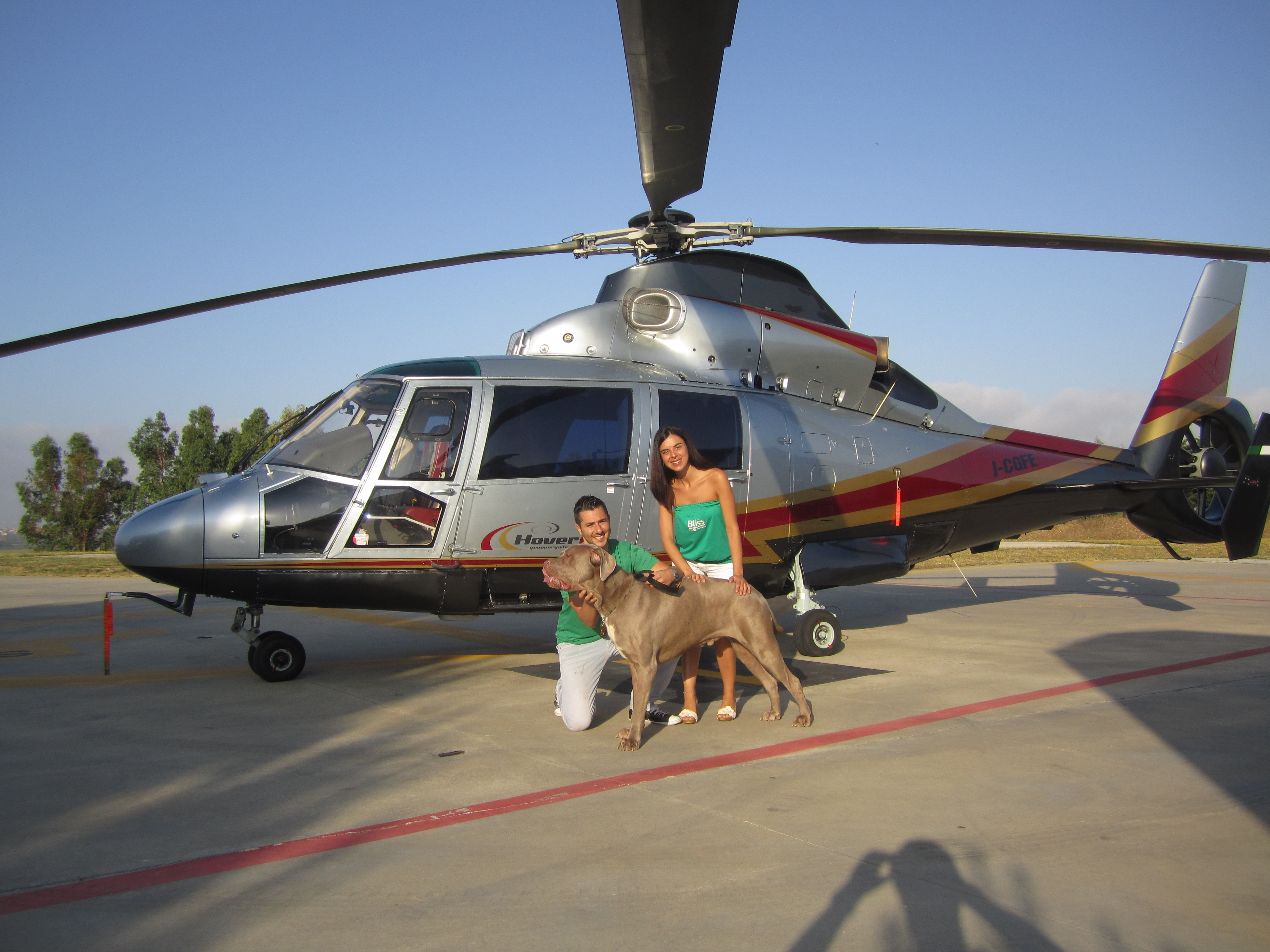 Bliss Pet Expert helicopter