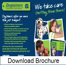Dogtainers Brochure