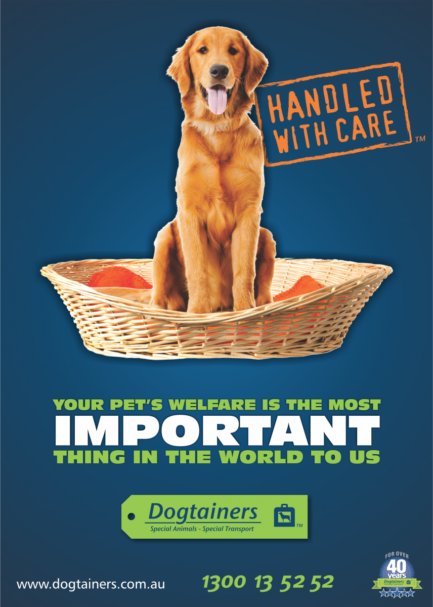 Dogtainers Pet Travel