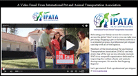 IPATA Video