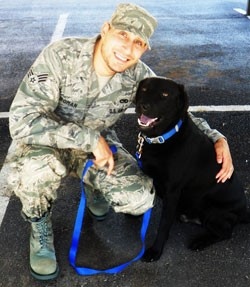 Happy Tails Pet Travel Military